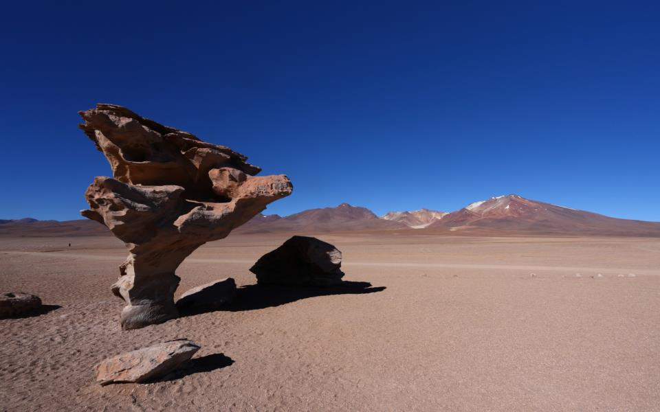 Tree Rock in the Uyuni desert, Bolivia